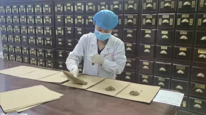 中医提醒:银杏果具一定毒性 食用须当心